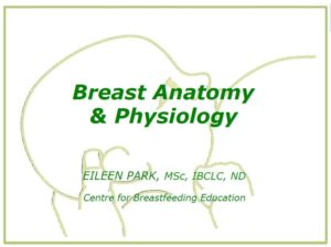 Anatomy & Physiology of Breastfeeding, 5L CERPs